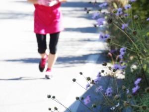 運動を生活習慣に